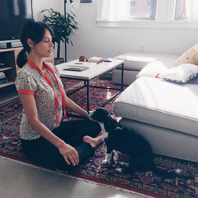 All brainstorming sessions must include meditations with dog. 🐶 We can't wait to share with you our growing visions for @mindfularts ! #staytuned #bergieandnef