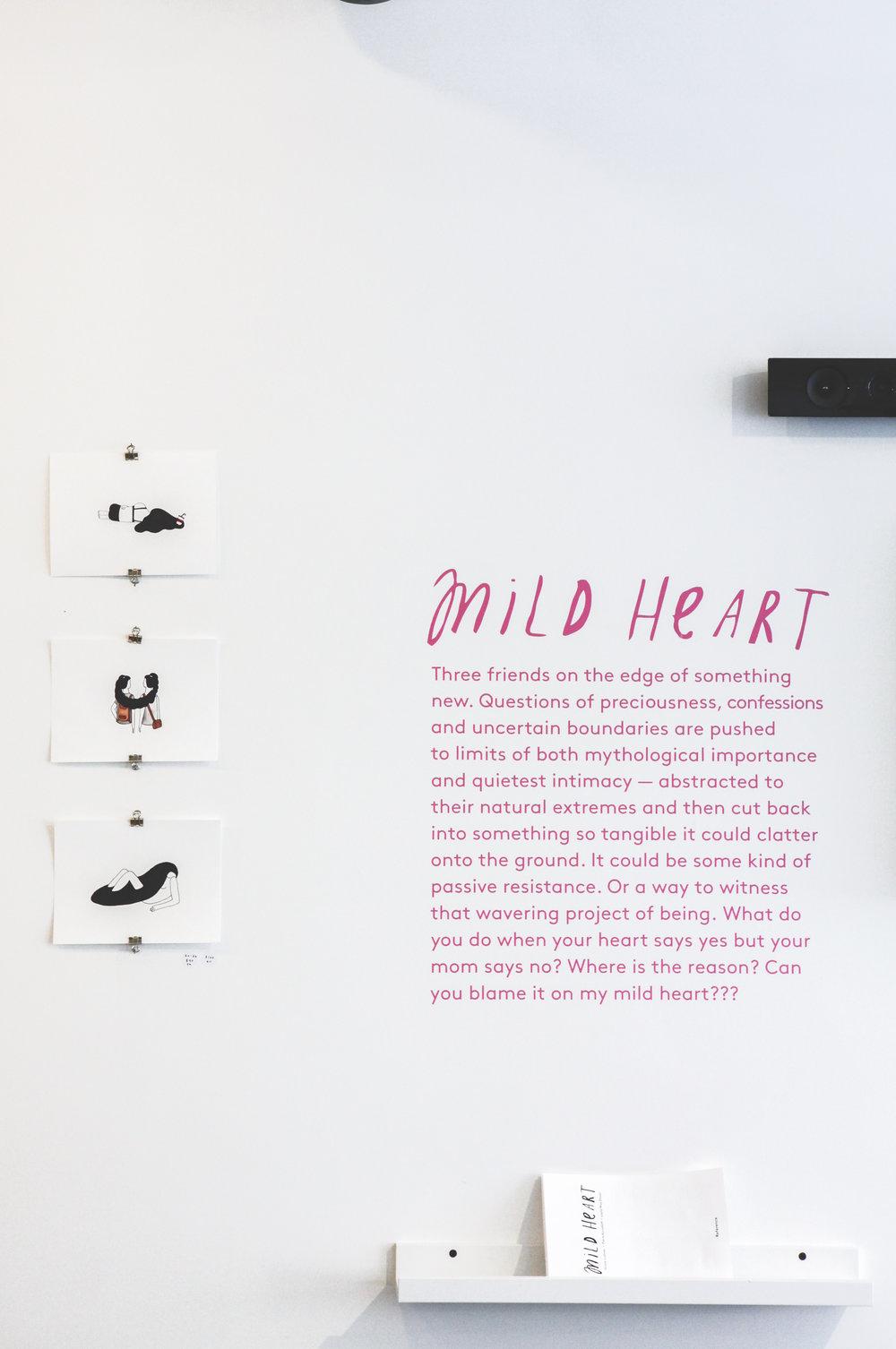 mild-heart_25.JPG