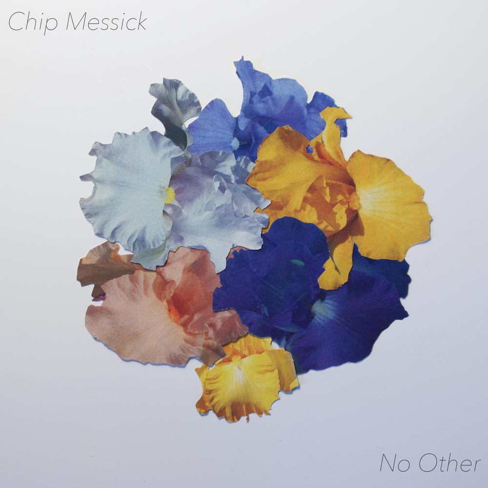 chip cover 7:4.jpg