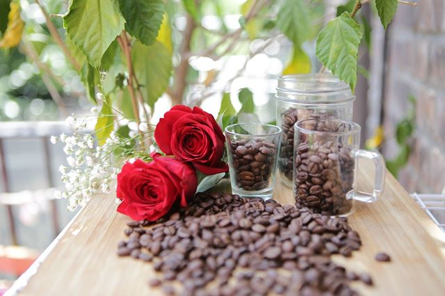 Have a beautiful Monday everyone from Wingbeans! . . . . . . .  #mondaymorning #mondaymood #motivationmonday #coffeelover #coffeeaddict #coffeebreak #coffeegram #coffee #java #coffeelife  #goodmorning #goodvibes #goodday #instahappy #instafood #instahome #spring #springtime