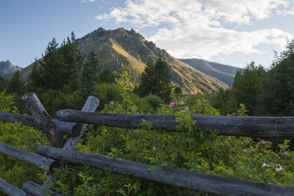 FR23221h-id-Fence and sunlit mountain.jpg