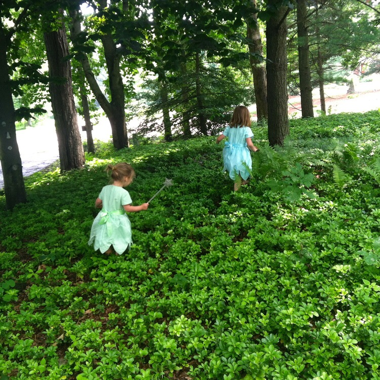 love aunt maggie | fairy sisters