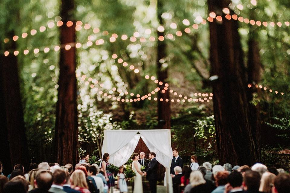 the redwood wedding of maggie & victor - a food truck wedding in the forest
