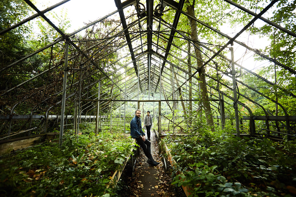 greenhouse far by Cortney Armitage.jpg