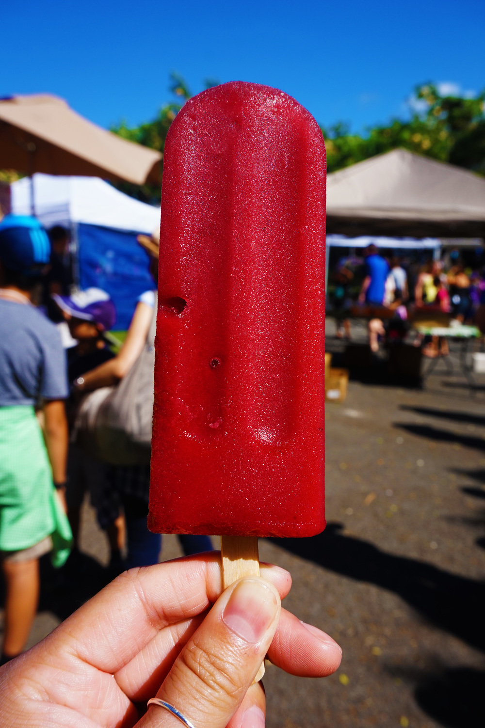 Watermelon-hibiscus ice pop