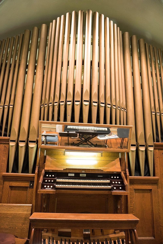organ026.jpg