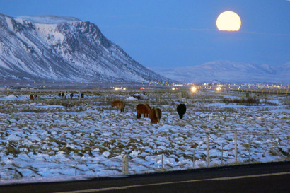 Selfoss is a small town in southern Iceland that lies along the famous Ring Road that circles the island. (Photo by Christian Bickel courtesy of Wikimedia Commons.)