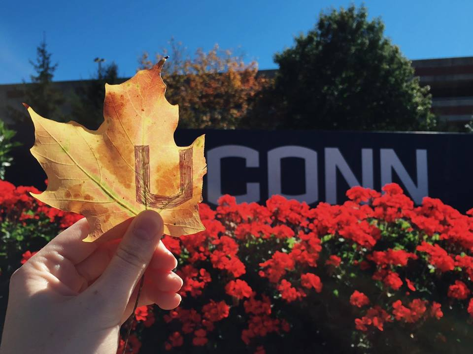 Photo Courtesy of the University of Connecticut's Facebook Page