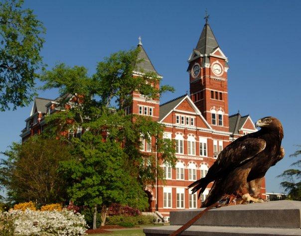 Photo Courtesy of Auburn University's Facebook Page