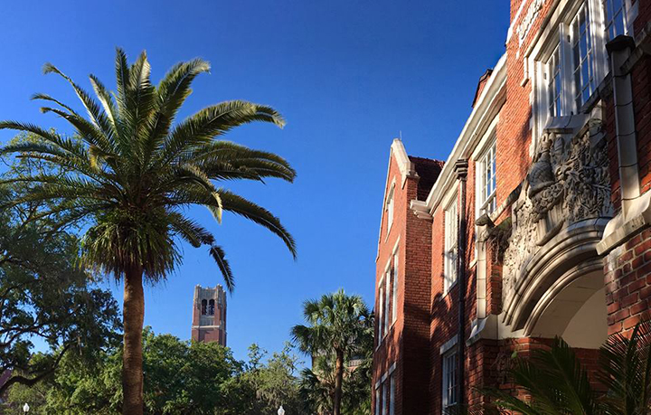 Photo Courtesy of the University of Florida's Facebook Page