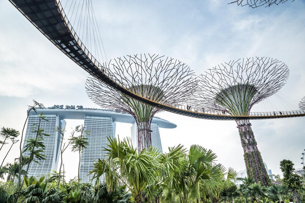 Singapura_out2012-9411.jpg