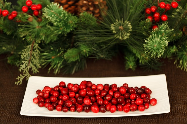 festivecranberries.jpg