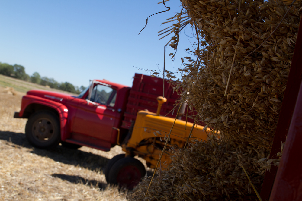 Grain, tractors, and trucks are just a few of the items that can be involved in probate administration.
