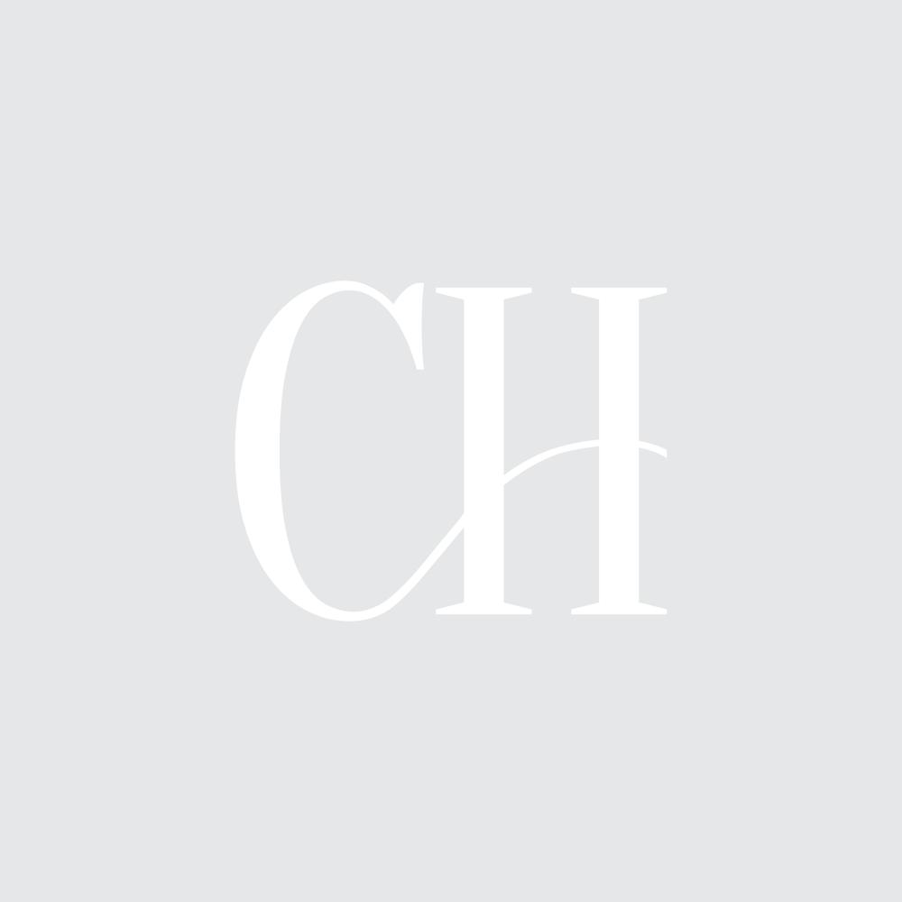 CH logo white-01.png