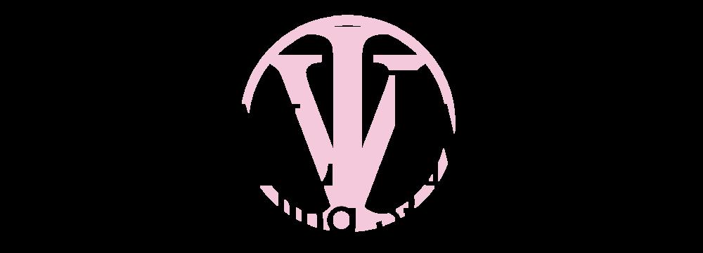 Vital Image Logo New (Light Background)-01 copy.png
