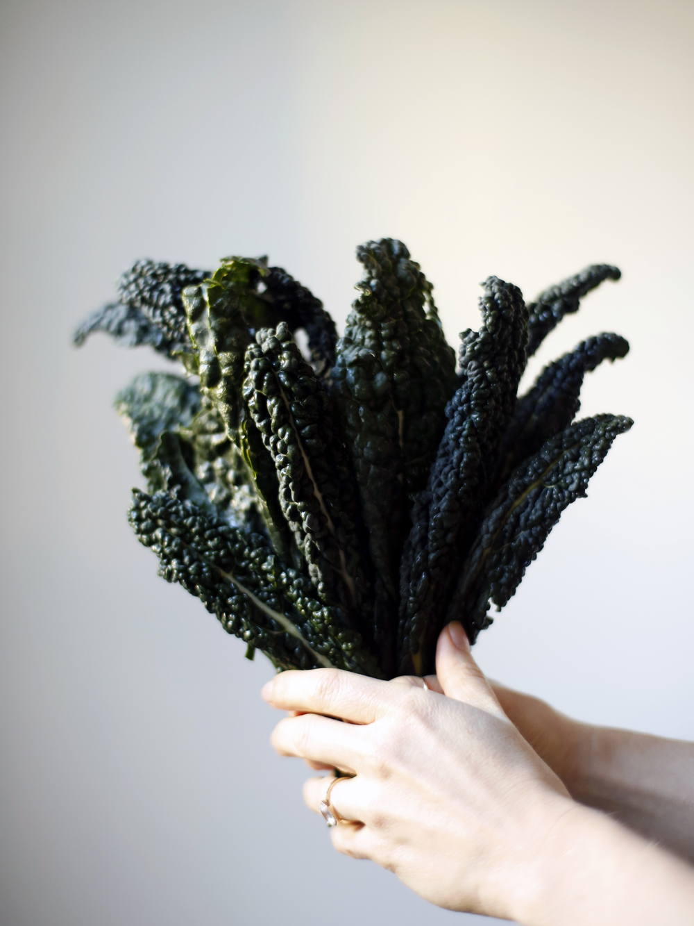 Photography By Alexa Gray, of Superfood Superlife