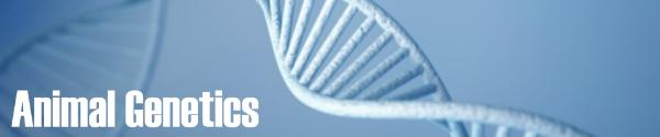 DNA-bannerus2.jpg