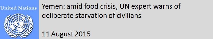 UN - 11 August 2015.jpg