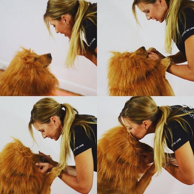 lion trainer #halloween
