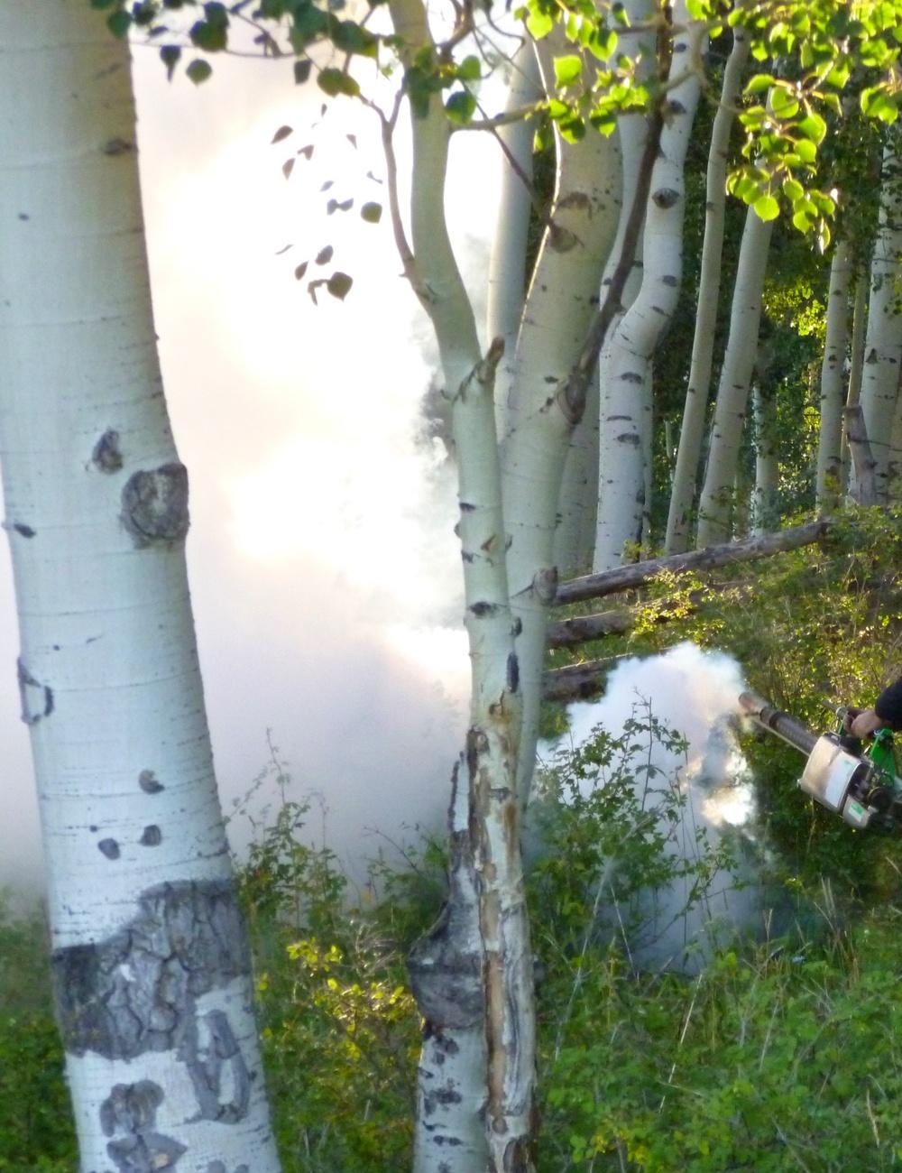 Smoke Efx w 2934.jpg