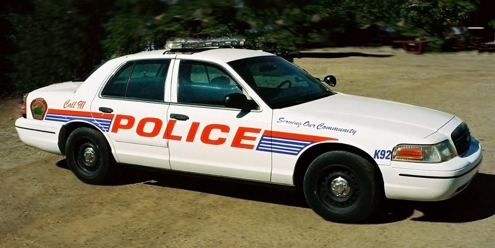 Police Car 3161.jpg