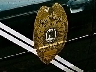 Police Car 3160.jpg