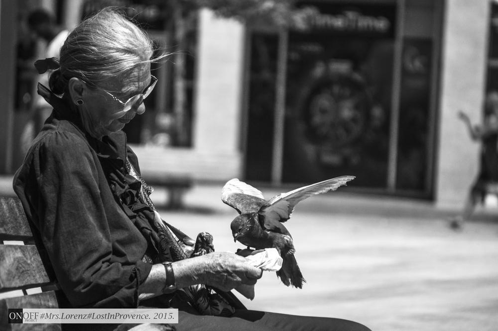 Lady Bird bw.jpg