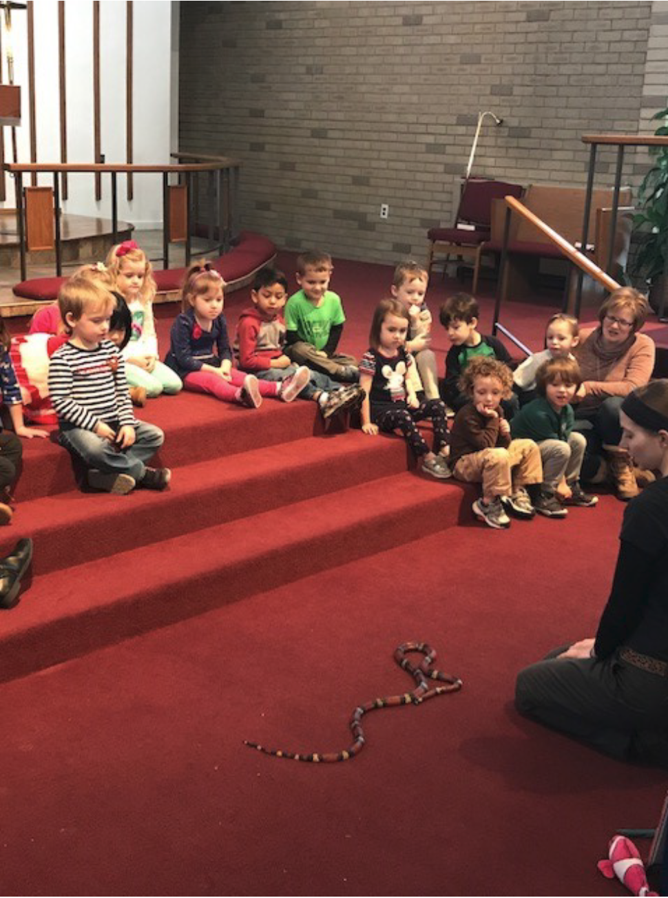 Yes….that is a milk snake slithering around in the sanctuary. YIKES!!