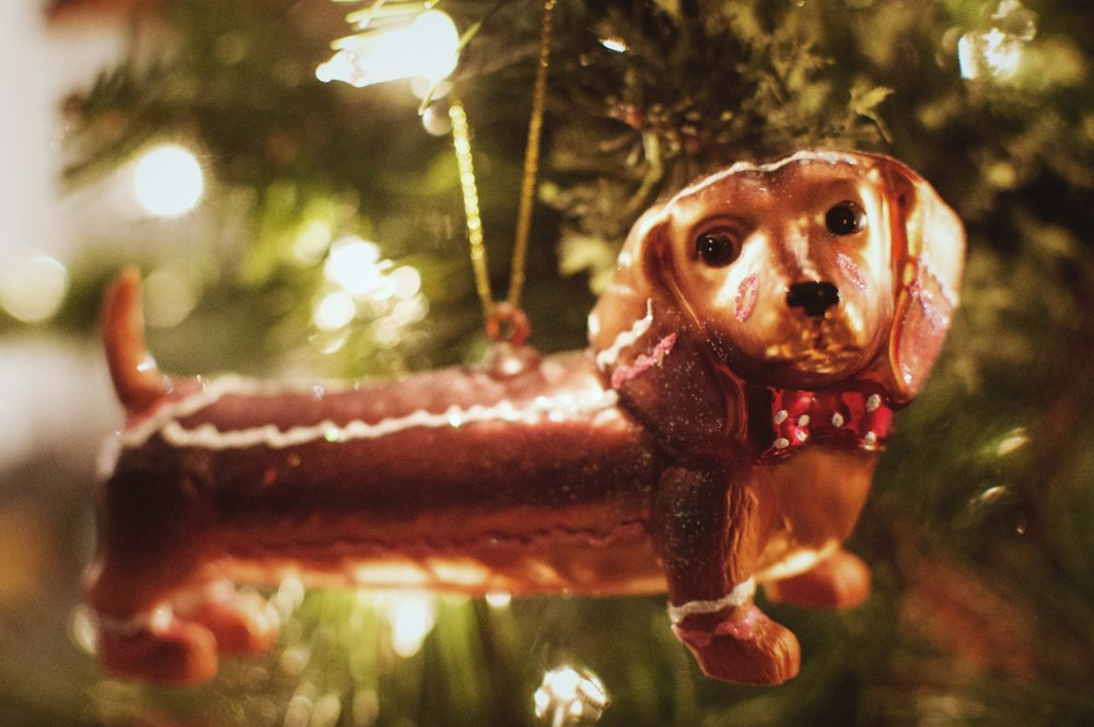 One of the many dachshund ornaments we have. Dog-owner problems. Looking at it, I do wonder what Dillard would look like in a bow tie.