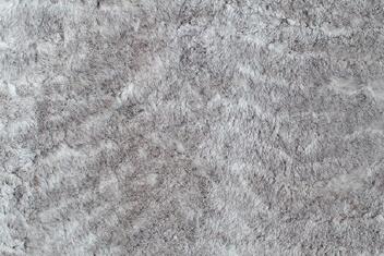 Snowy Grey