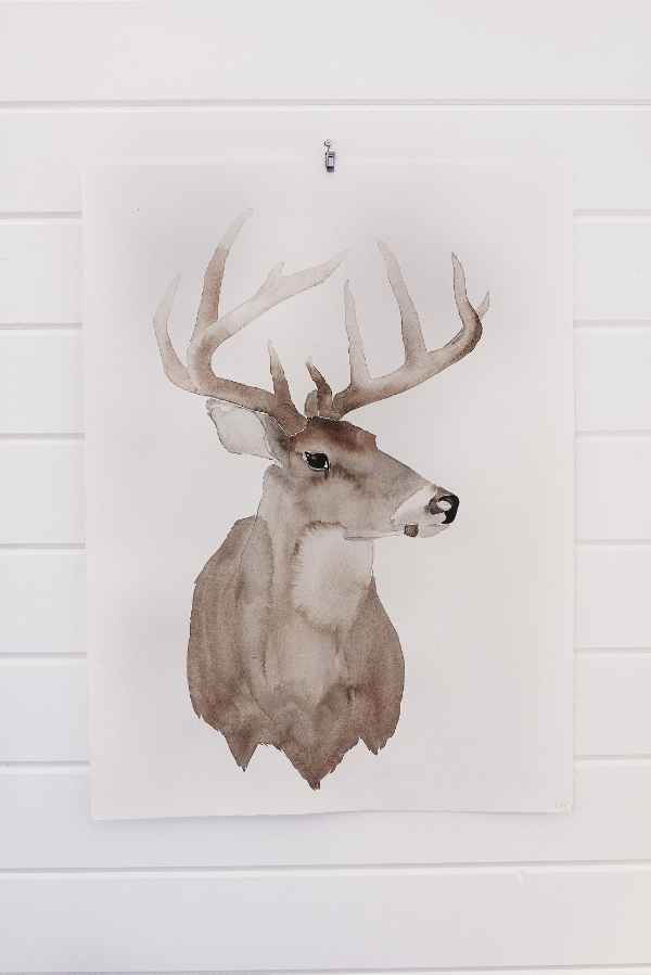 deer hanging .jpg
