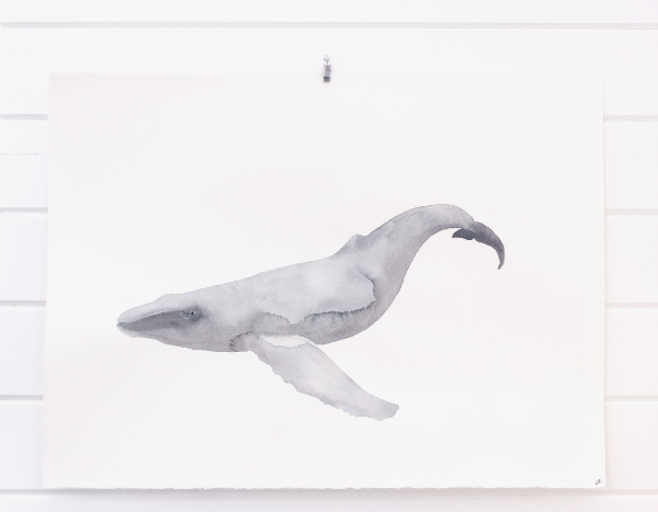 whale hanging .jpg