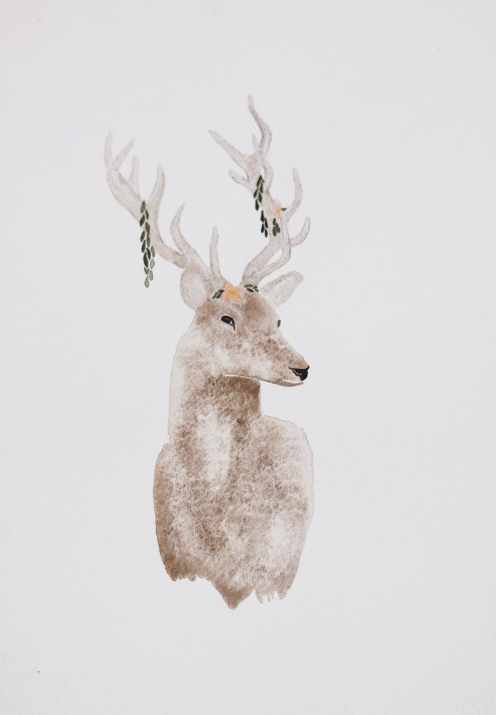 Original watercolors from Seattle-based, Devon Clappe. Devon is inspired by the wildlife that surrounds us and she captures this wildlife in rich detail with a muted elegance. We are so excited to be featuring her beautiful pieces.