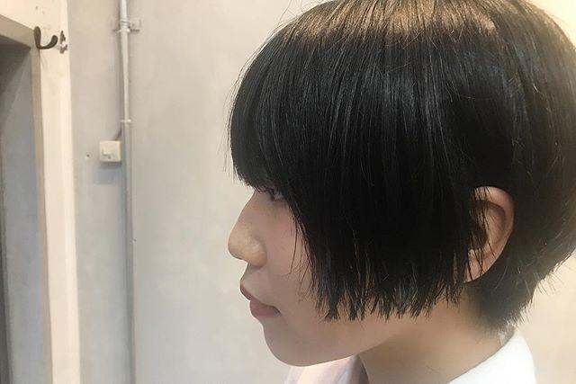short 🔗 . バッサリ .