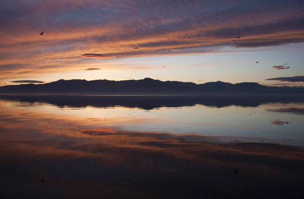 Salton Sea, Joshua Tree, Mecca, California