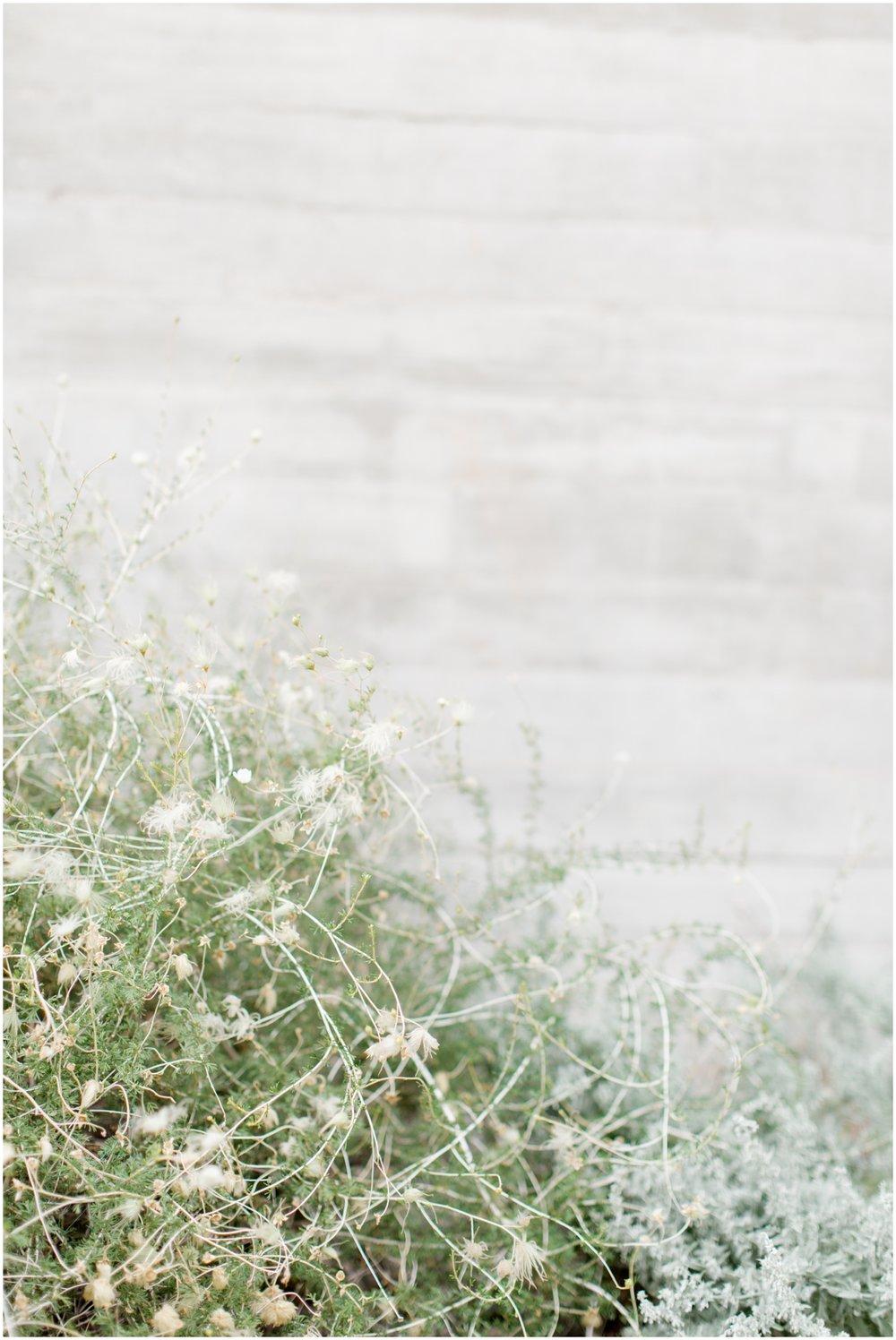 erinelizabethphoto-443.jpg