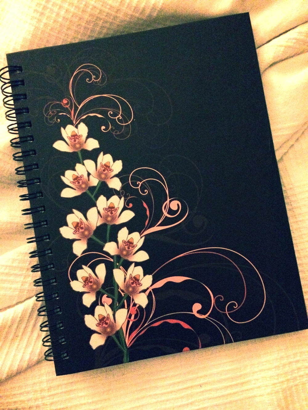 My journal...
