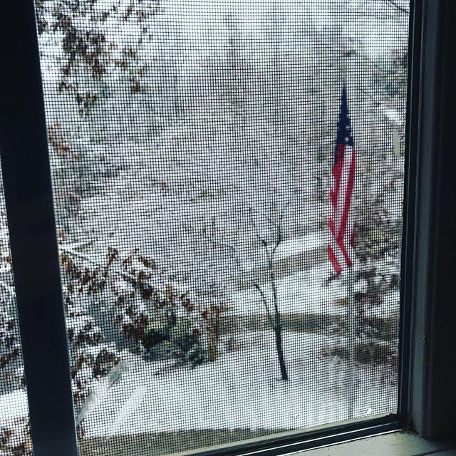 Winter wonderland cul-de-sac.