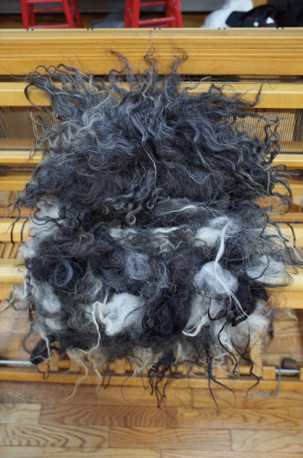Transition to completely raw Icelandic fleece.