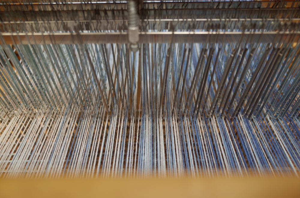 Warp through the heddles.