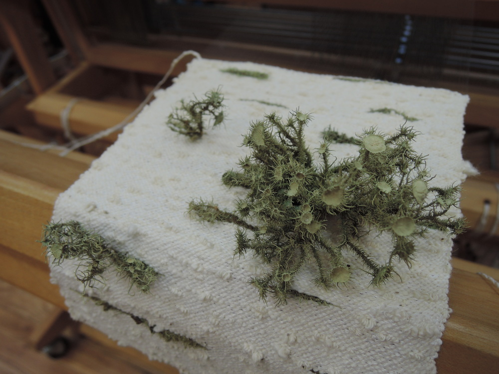 Lichen detail on the loom.
