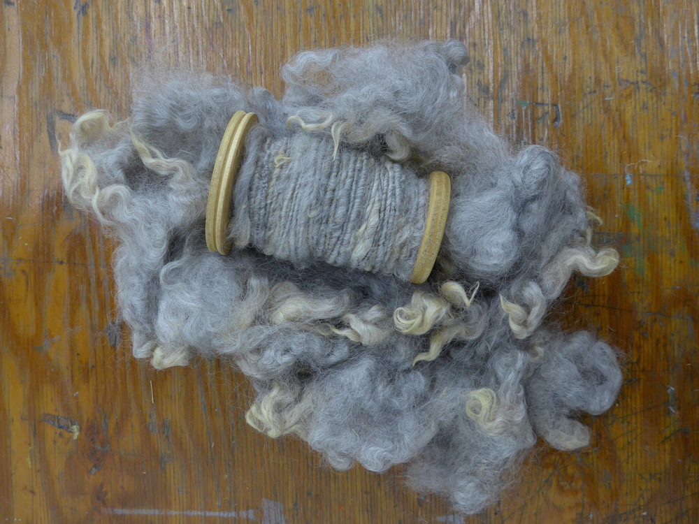 This was one of my favorite variegated hand spun yarns because of the texture, colors, and beautiful silvery sheen.  The fleece is from Pixel, a very happy rescue sheep living on a small farm with his retired mom and his troublesome twin sister.