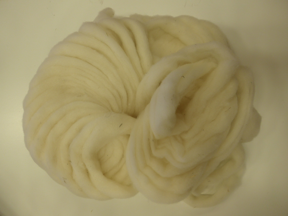 Foster's merino cross roving arrives in the most spectacular spirals.