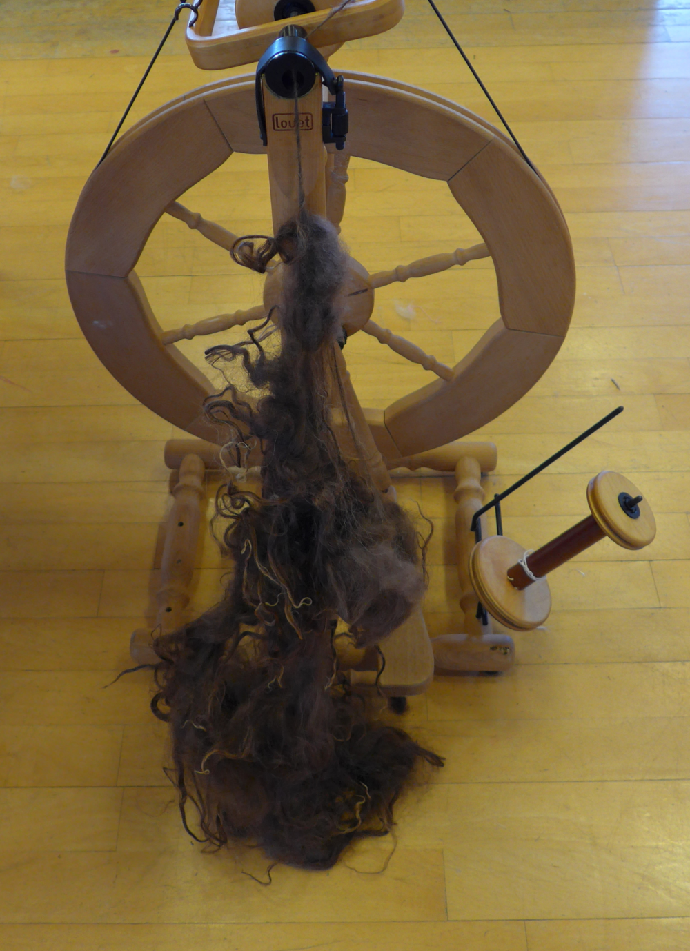 Spinning yarn directly from an Icelandic fleece.