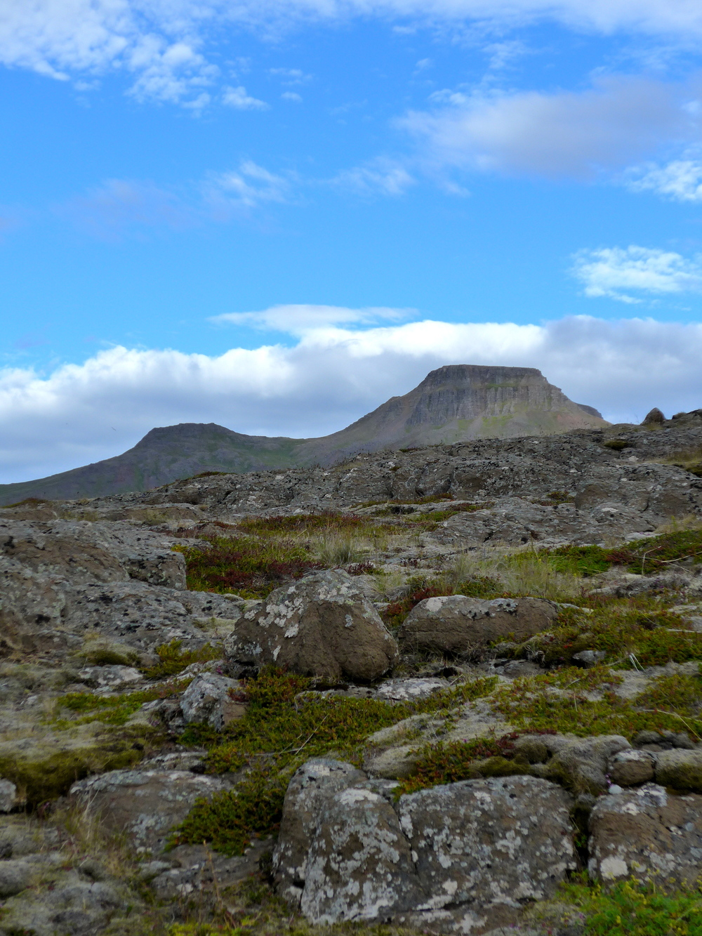 The top of the mountain from our hiking trail.