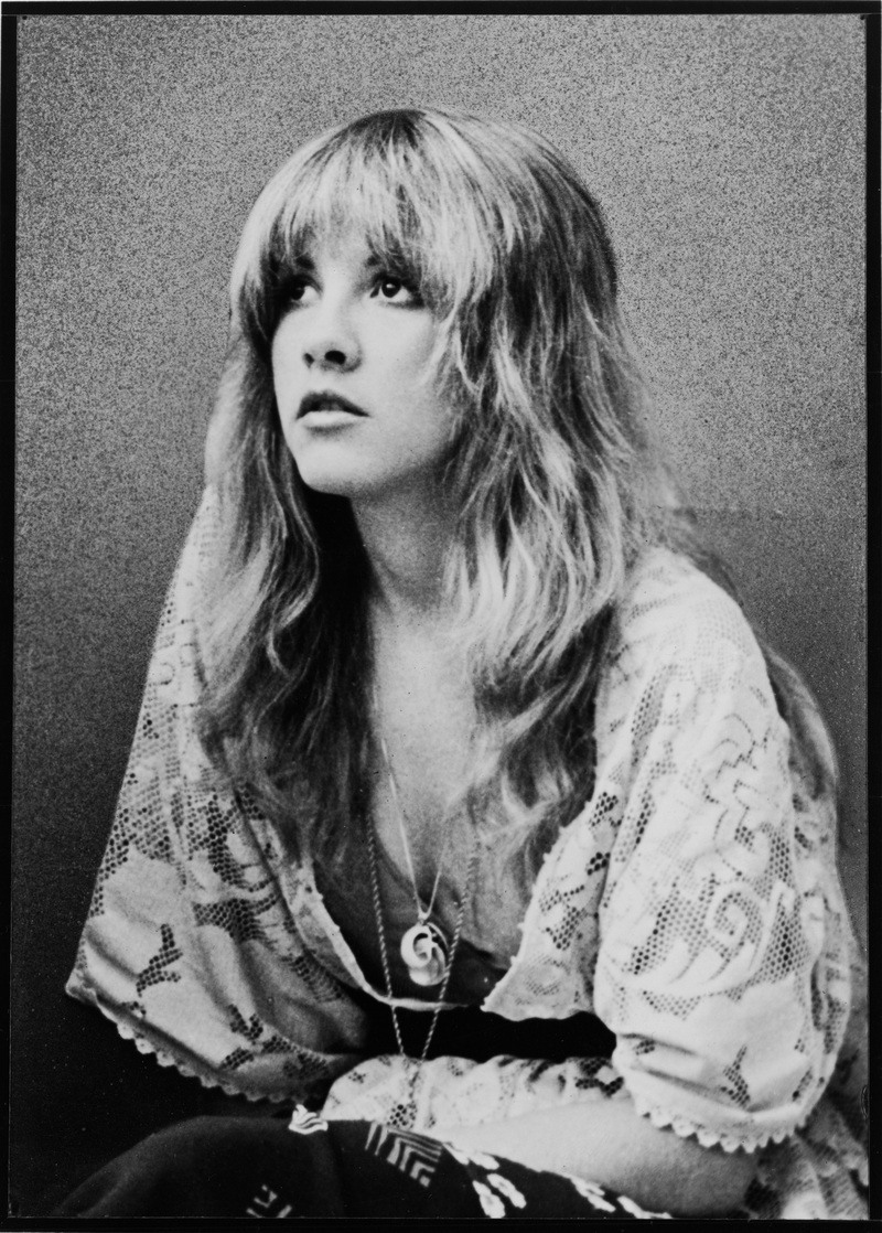 Portrait Of Stevie Nicks
