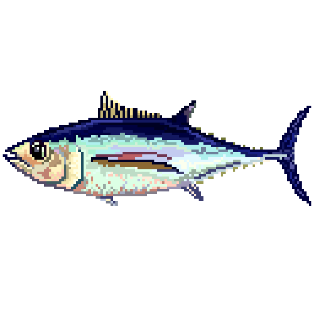 albacore.png