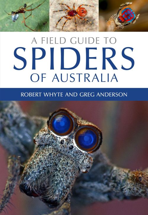 A Field Guide to Spiders of Australia cover. Don't leave home without it.