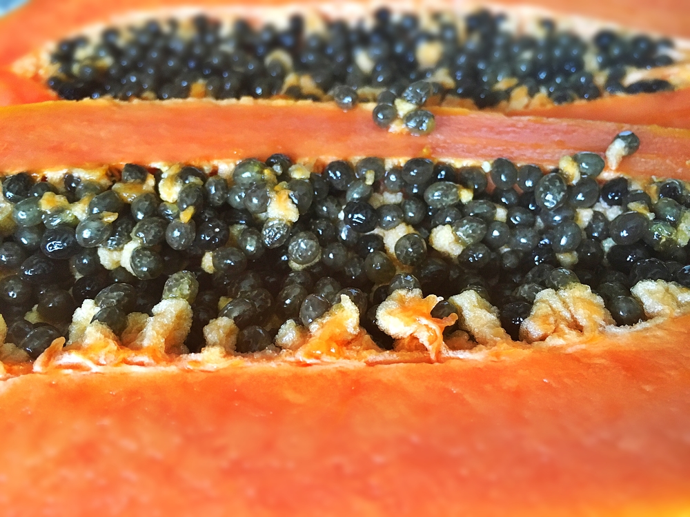 Fresh and Ripe Papaya