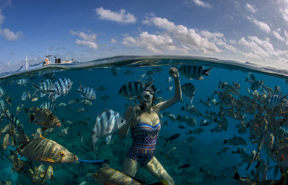 Kate Pollock with a school of fish, French Polynesia.